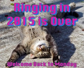 Hair of the Dog: 22 Party Animals Still Hungover from Ringing in the New Year
