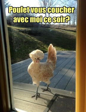 After Christmas, Three French Hens Set Up Escort Service to Make Ends Meet