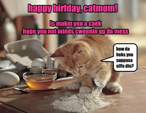 happy birthday, catmom!