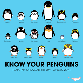 Today is World Penguin Day! How Well Do You Know Your Penguins?