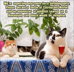 Happy birthday catmom!