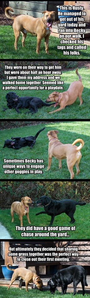 Becky and Rusty meet