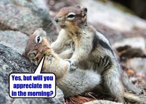 Squirrel Appreciation Day~Jan. 21, 2015