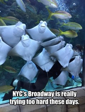 NYC's Broadway is really trying too hard these days.