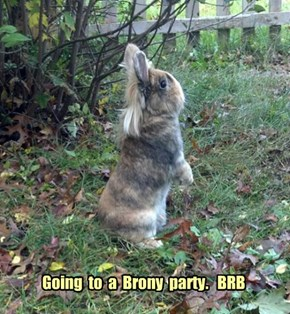 Going  to  a  Brony  party.   BRB