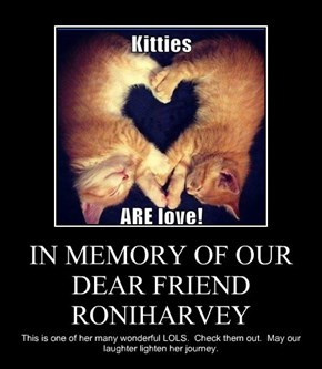 IN MEMORY OF OUR DEAR FRIEND RONIHARVEY