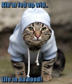 Aih'm fed up wid..  Life in da hood!
