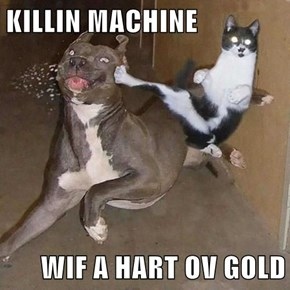 KILLIN MACHINE  WIF A HART OV GOLD