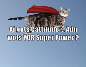 Ai gots Cattitude ... Adn wots YOR Super Power ?