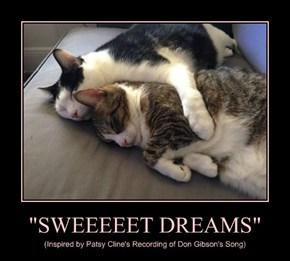 """""""SWEEEEET DREAMS"""""""