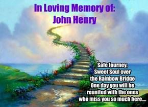 In Loving Memory of: John Henry