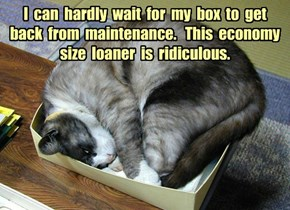I  can  hardly  wait  for  my  box  to  get  back  from  maintenance.   This  economy  size  loaner  is  ridiculous.