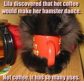 Lila discovered that hot coffee would make her hamster dance.          Hot coffee, it has so many uses.