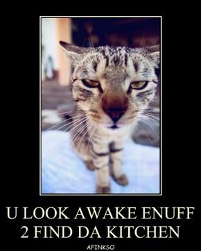 U LOOK AWAKE ENUFF 2 FIND DA KITCHEN