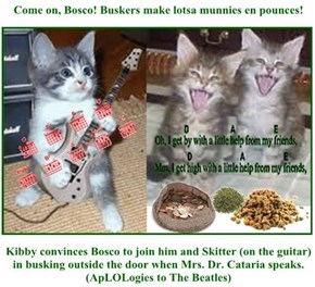 Come on, Bosco! Buskers make lotsa munnies en pounces!  Kibby convinces Bosco to join him and Skitter (on the guitar) in busking outside the door when Mrs. Dr. Cataria speaks. (ApLOLogies to The Beatles)