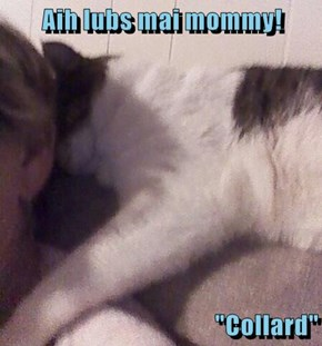 "Aih lubs mai mommy!  ""Collard"""