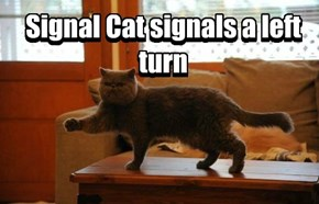 You Don't Really Have to Signal, But You Do You