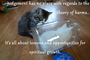 Judgement has no place with regards to the theory of karma..  It's all about lessons and opportunities for spiritual growth.