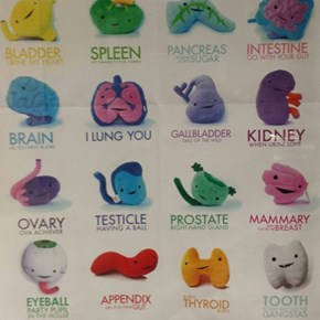 Adorable Organs, AKA Adorganable