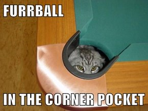 FURRBALL  IN THE CORNER POCKET