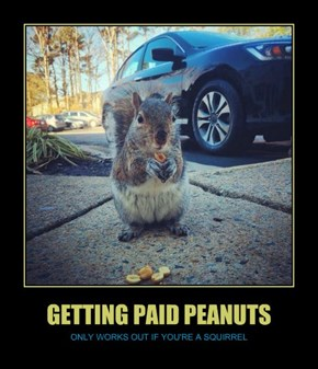 GETTING PAID PEANUTS