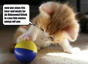 skolar Binky has started leevin toys out ovurnite fur da Unknowed Kitteh to pways wif