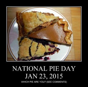 NATIONAL PIE DAY JAN 23, 2015
