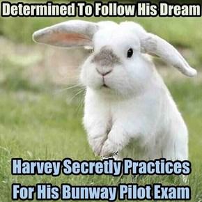 Cutest Trainee Pilot Ever