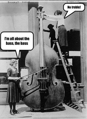 I'm all about the bass, the bass