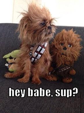 Hey babe, sup?