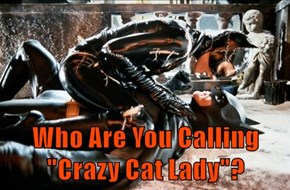 "Who Are You Calling ""Crazy Cat Lady""?"