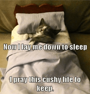 A kitten's bedtime prayer