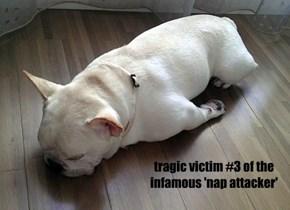 tragic victim #3 of the infamous 'nap attacker'