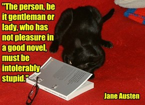 """The person, be it gentleman or lady, who has not pleasure in a good novel, must be intolerably stupid."""