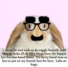 I, nown far and wide as da wiggly bunneh, wud likez to fanks all ob RH's cheez frenz for heppin her fru sum hawd timez.  Dis berry hawd time so haz tu put on my funneh face for herz.  Lubs an hugz.