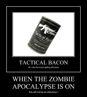 WHEN THE ZOMBIE APOCALYPSE IS ON