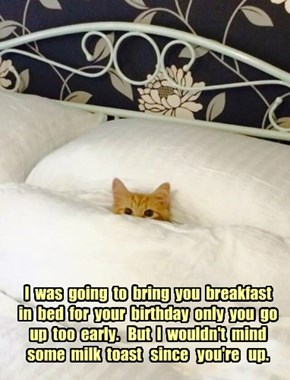 I  was  going  to  bring  you  breakfast  in  bed  for  your  birthday  only  you  go  up  too  early.   But  I  wouldn't  mind   some  milk  toast   since   you're   up.
