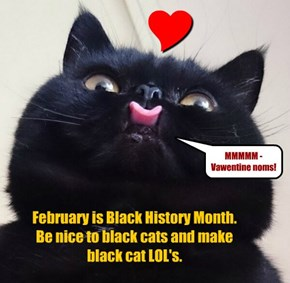 February is Black History Month. Be nice to black cats and make black cat LOL's.