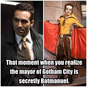 He's the mayor Gotham deserves.