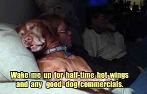 Wake  me  up  for  half-time  hot  wings  and  any   good   dog  commercials.