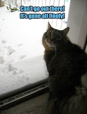Can't go out there!  It's gone all floofy!