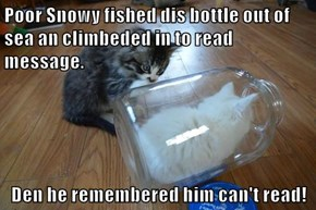 Poor Snowy fished dis bottle out of sea an climbeded in to read message.  Den he remembered him can't read!