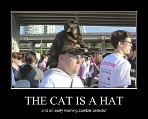 THE CAT IS A HAT