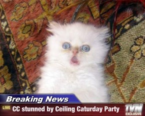 Breaking News - CC stunned by Ceiling Caturday Party