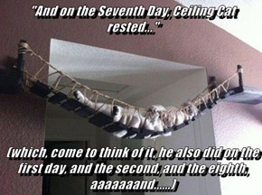 """And on the Seventh Day, Ceiling Cat rested...""  (which, come to think of it, he also did on the first day, and the second, and the eighth, aaaaaaand......)"