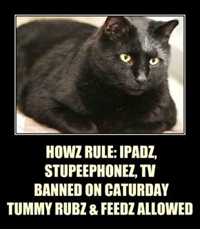 HOWZ RULE: IPADZ, STUPEEPHONEZ, TV  BANNED ON CATURDAY TUMMY RUBZ & FEEDZ ALLOWED