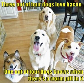 Screw it, Just Give Me the Medicine Bacon
