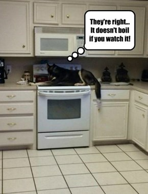 Would it help if I turned on the stove?