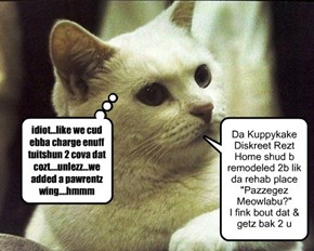 Ceiling Cat Hears Ur Prayers