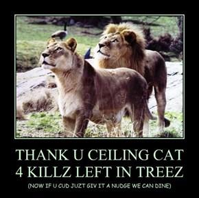 THANK U CEILING CAT 4 KILLZ LEFT IN TREEZ